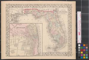 Primary view of object titled 'County map of Florida.'.