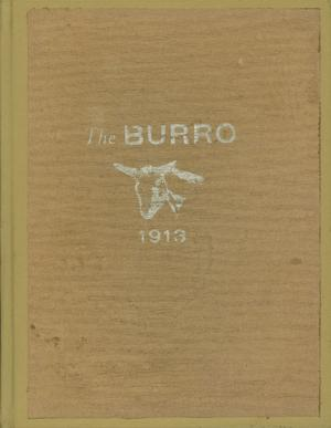 The Burro, Yearbook of Mineral Wells High School, 1913