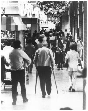 Primary view of object titled 'Shoppers in Northeast Mall'.