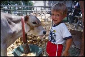 Primary view of object titled '[Boy Standing Next to a Dairy Cow]'.