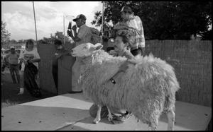 Primary view of object titled '[Sheep Shearing]'.