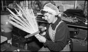 Primary view of object titled '[Sue Zukowski, Broom Maker]'.