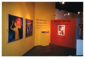 Primary view of object titled '[Title Wall for Adolfo Mexiac Retrospective]'.
