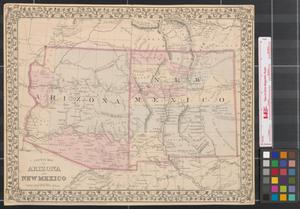 County map of Arizona and New Mexico  The Portal to Texas History