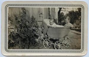 [Wendell and Walden Tarver in Baby Carriage]
