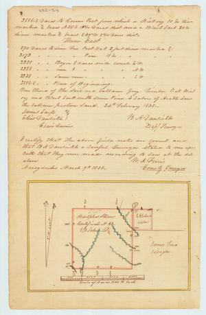 Primary view of object titled 'Land survey for Adolphus Sterne'.