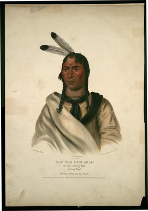 "Primary view of object titled '""Esh-Tah-Hum-Leah, or the Sleepy Eye:  A Sioux Chief'."