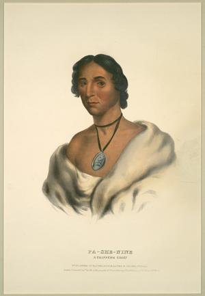 "Primary view of object titled '""Pa-She-Nine, A Chippewa Chief""'."