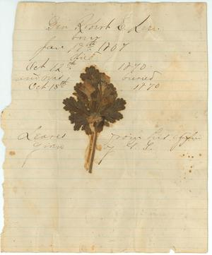 Primary view of object titled 'Leaves from the coffin of General Robert E. Lee'.