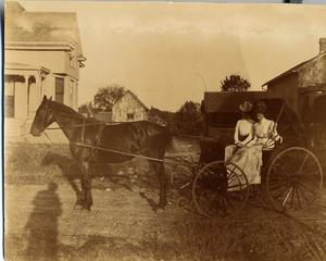 Primary view of object titled 'Agnes Sueppel Schulze in Buggy, c. 1904'.