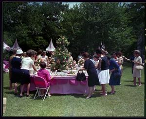 Primary view of object titled 'Outdoor Reception, Fashion Show and Buffet'.