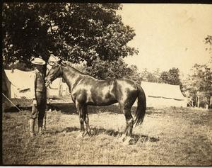Man Posing with a Horse at Surveyors' Camp, c. 1902