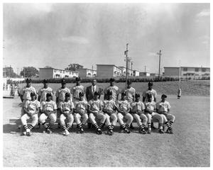 Primary view of object titled '[Portrait of the Anderson High School Baseball Team]'.