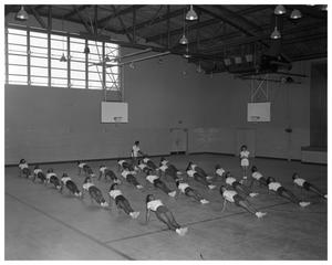 Primary view of object titled '[An Anderson High School Gym Class]'.