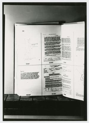 Primary view of object titled '[FBI Report]'.