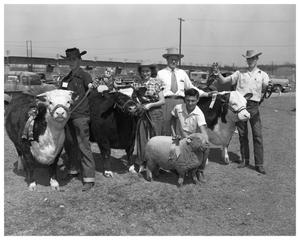 Primary view of object titled 'Farmers with sheep'.