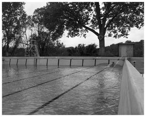 Primary view of object titled 'Deep Eddy Pool with diving board'.