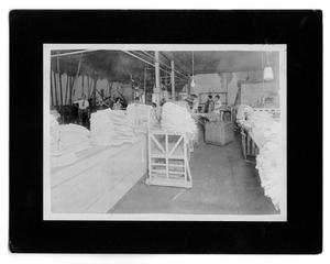 Primary view of object titled 'Hargrave Laundry Employees in 1927'.