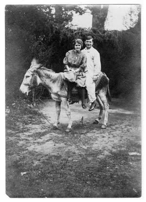Primary view of object titled 'Dr. & Mrs. Frank B. Bryan'.
