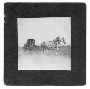 Primary view of object titled '[J Martin Crews and Annie Lee Jefferies]'.
