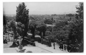 Primary view of object titled '[Postcard of people walking on a terrace overlooking a forest]'.