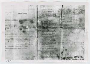 Primary view of object titled '[Forms in Russian, Photograph #1]'.