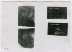 Primary view of object titled '[Negatives, Photograph #2]'.