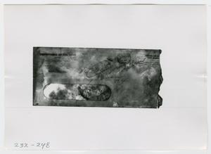 Primary view of object titled '[Photographs of Documents]'.