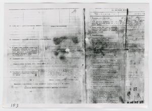 Primary view of object titled '[Forms in Russian, Photograph #2]'.