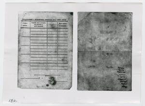 Primary view of object titled '[Documents in Russian, Photograph #2]'.