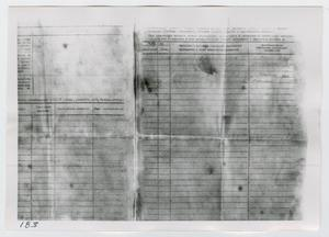 Primary view of object titled '[Forms in Russian, Photograph #3]'.