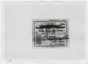 [Certificate of Birth Registration]