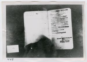 Primary view of object titled '[Lee Harvey Oswald's Passport, Photograph #6]'.
