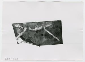 Primary view of object titled '[Document, Photograph #6]'.