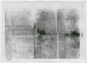 Primary view of object titled '[Photographs of Russian Forms]'.