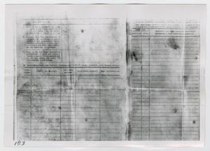 Primary view of object titled '[Forms in Russian, Photograph #4]'.