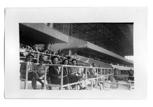Primary view of object titled 'Marie Burkhalter and a group of people sitting in the stands'.