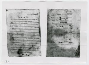 Primary view of object titled '[Documents in Russian, Photograph #1]'.