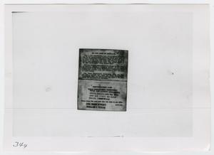 Primary view of object titled '[Identification Cards, Photograph #3]'.