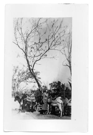Primary view of object titled 'Marie Burkhalter standing next to mules under a tree'.
