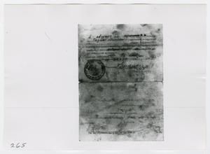 Primary view of object titled '[Photographs of Russian Documents]'.