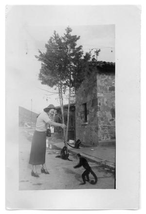 Primary view of object titled 'Marie Burkhalter feeds a monkey  playing in the street'.
