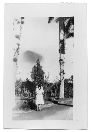 Primary view of object titled 'Unidentifiable pair of people on the side of the road'.