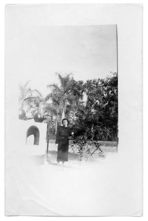 Primary view of object titled 'Woman stands next to fence'.