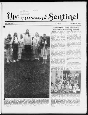 Primary view of object titled 'The Sachse Sentinel (Sachse, Tex.), Vol. 16, No. 5, Ed. 1 Wednesday, January 30, 1991'.