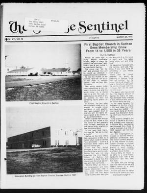 Primary view of object titled 'The Sachse Sentinel (Sachse, Tex.), Vol. 16, No. 12, Ed. 1 Wednesday, March 20, 1991'.