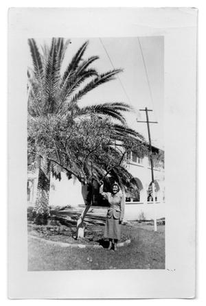 Primary view of object titled 'Woman standing next to a tree'.