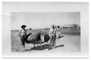 Primary view of object titled 'Two men and a mule carrying hay'.