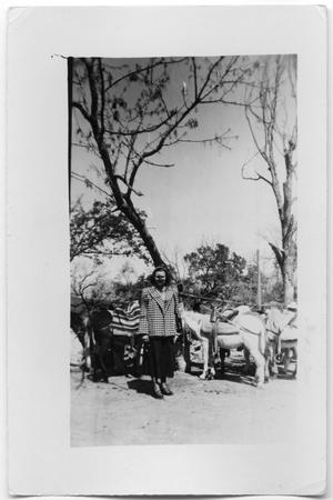 Primary view of object titled 'Unidentified woman with mules'.