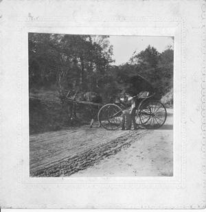 Primary view of object titled 'Mrs. Barkley and Her Buggy at the Side of the Road'.